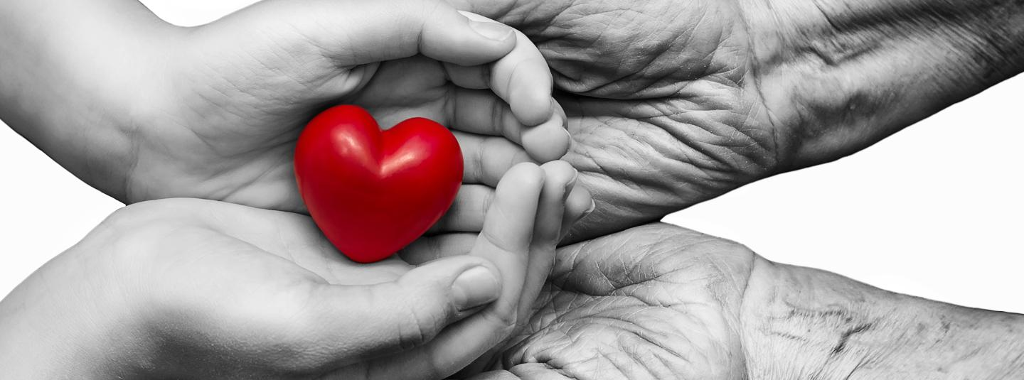 Two hands touching each other with one hand cupping a red heart